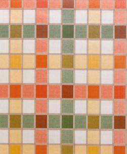 Tovaglia mollettone multicolor