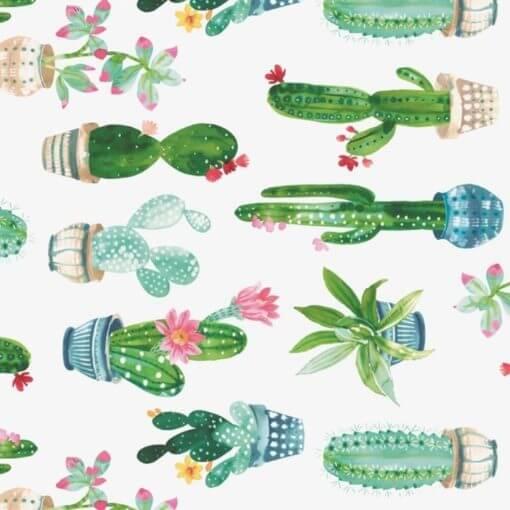tovaglia al metro fantasia cactus